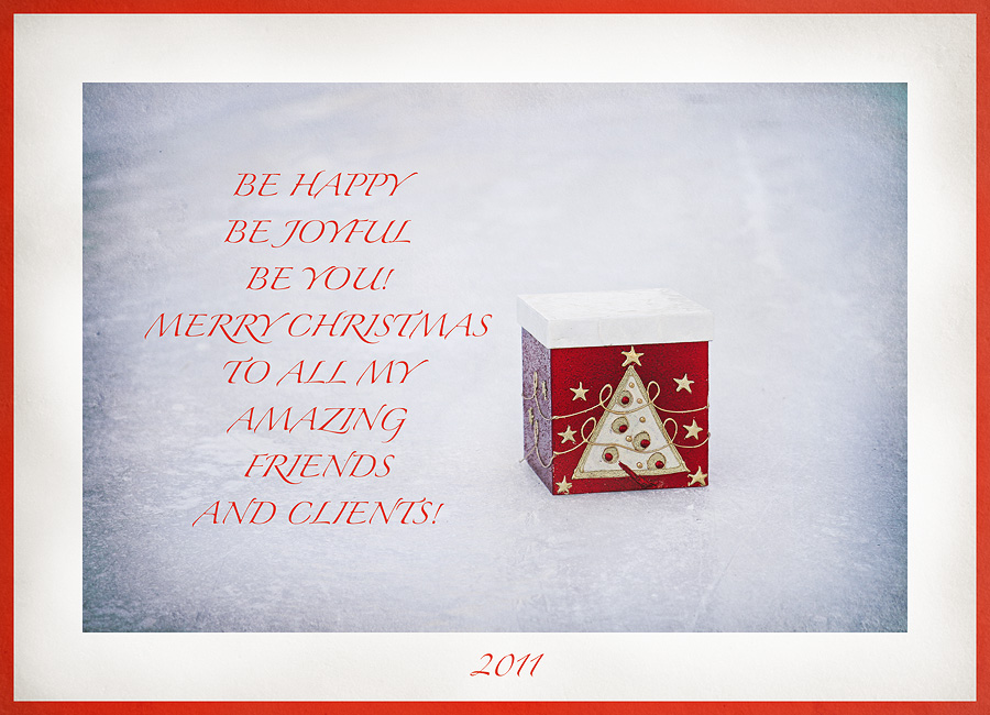merry christmas photo, presents, new year, Calgary photographer, Bowness Park, Alberta, christmas tree, Santa