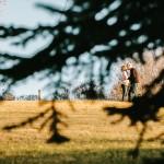 calgary engagement photos, calgary wedding photos, svetlana yanova, confederation park calgary, photos with dogs calgary, scrabble, themed engagement photos