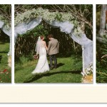 Tatiana and Mitch Wedding Photos_Backyard20
