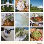Tatiana and Mitch Wedding Photos_Backyard7