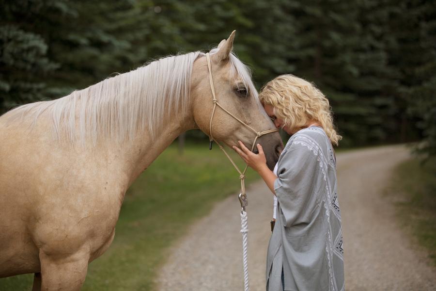 calgary horse photos, prides portrait photos, calagry portrait photographers, calgary pet photographers, yyc photographers,  connection session, calgary photographers