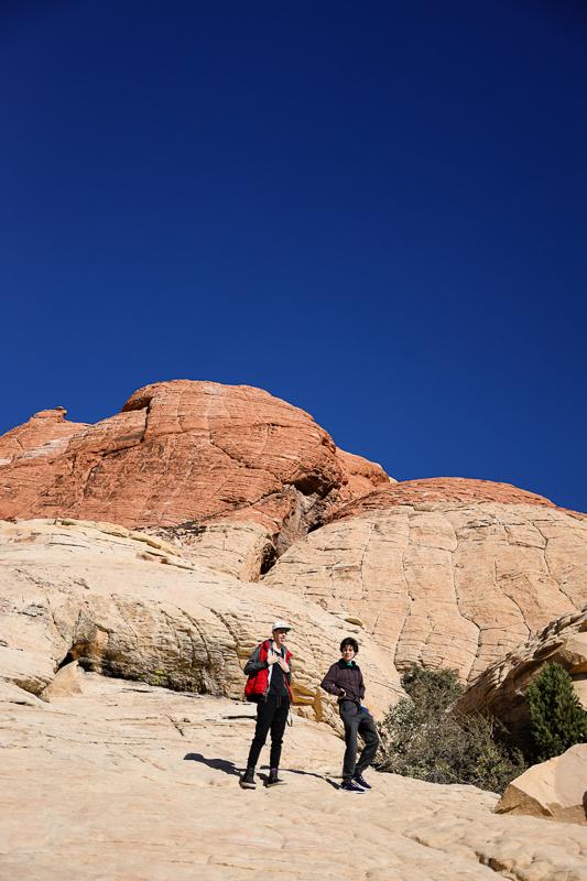 vacation in Las Vegas Nevada, Red Rock Canyon, svetlana Yanova, Joshua tree national park