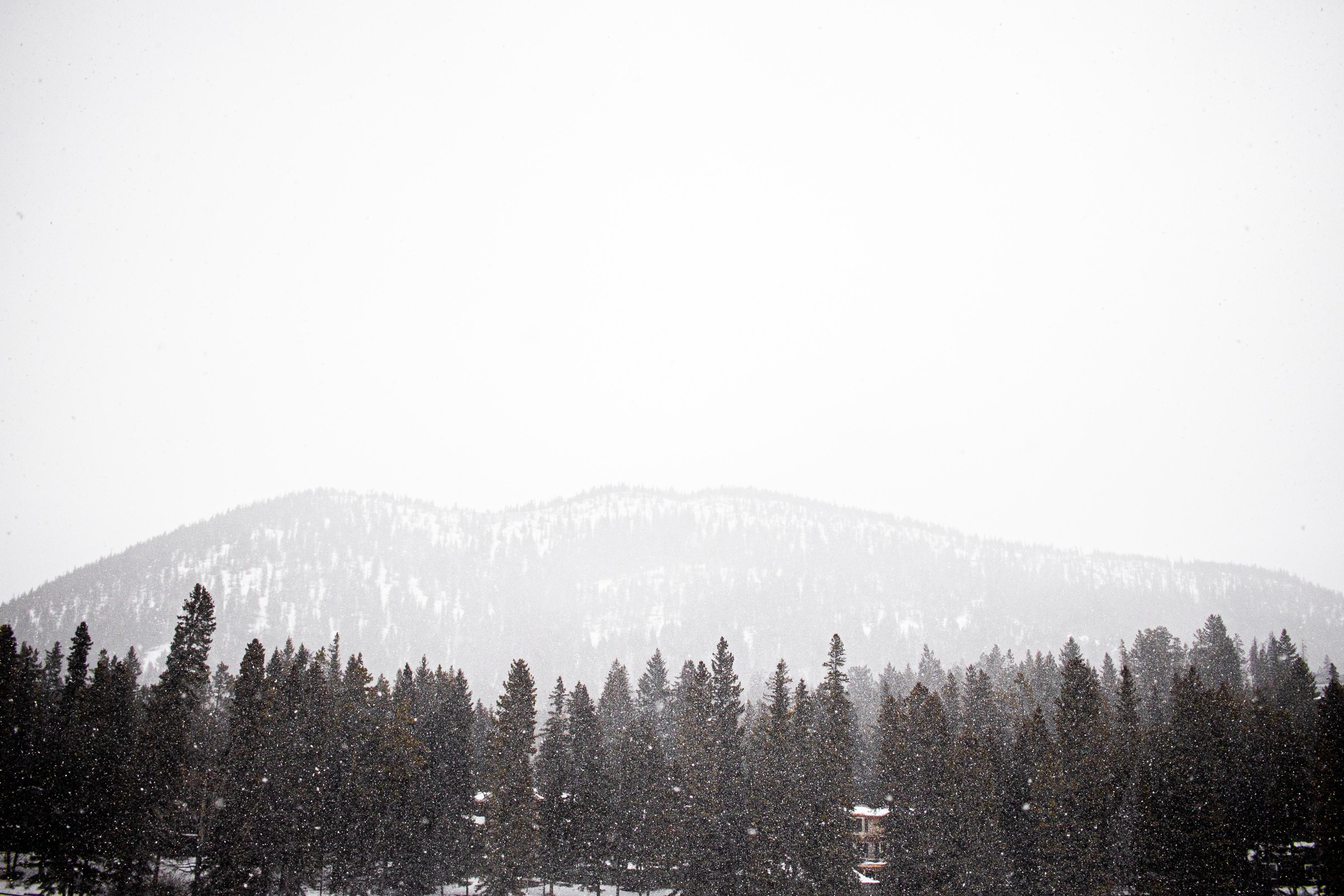 yyc photographer, Calgary photographer, Banff, Alberta, Canadian landscape, Svetlana Yanova,